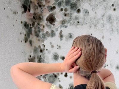 Muffa sui muri e sulle pareti di casa ecco cosa fare per - Decorazioni sui muri di casa ...